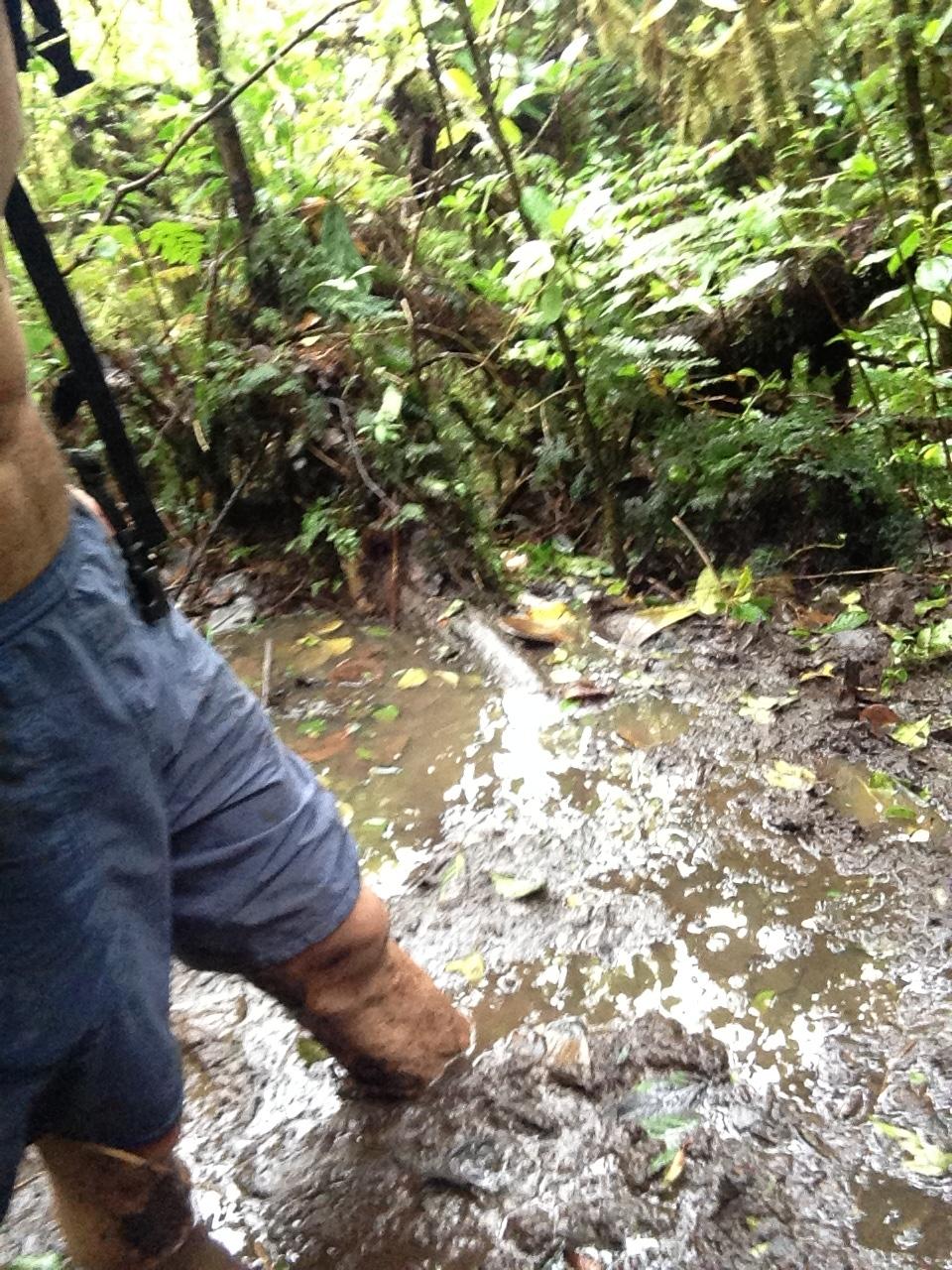 maderas mud